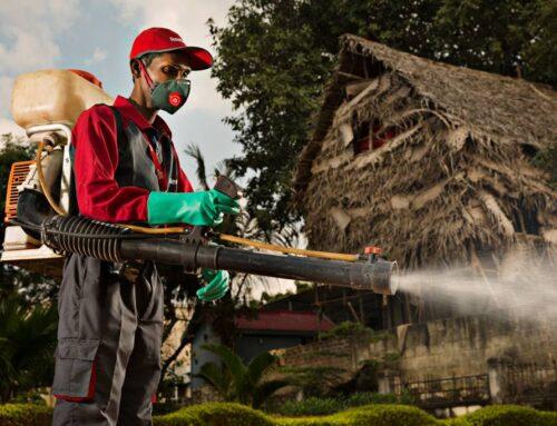 شركة رش حشرات في الشارقة |0556216906 |المبيدات الحشرية