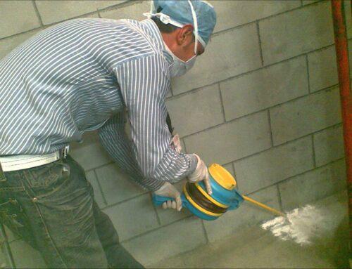 شركة مكافحة الفئران في ام القيوين |0556216906| ابادة فورية