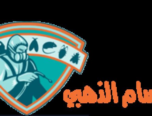شركة رش حشرات في ابوظبي |0556216906 |ابادة فورية